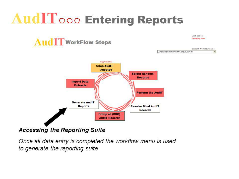 AudIT Entering Reports Accessing the Reporting Suite Once all data entry is completed the workflow menu is used to generate the reporting suite