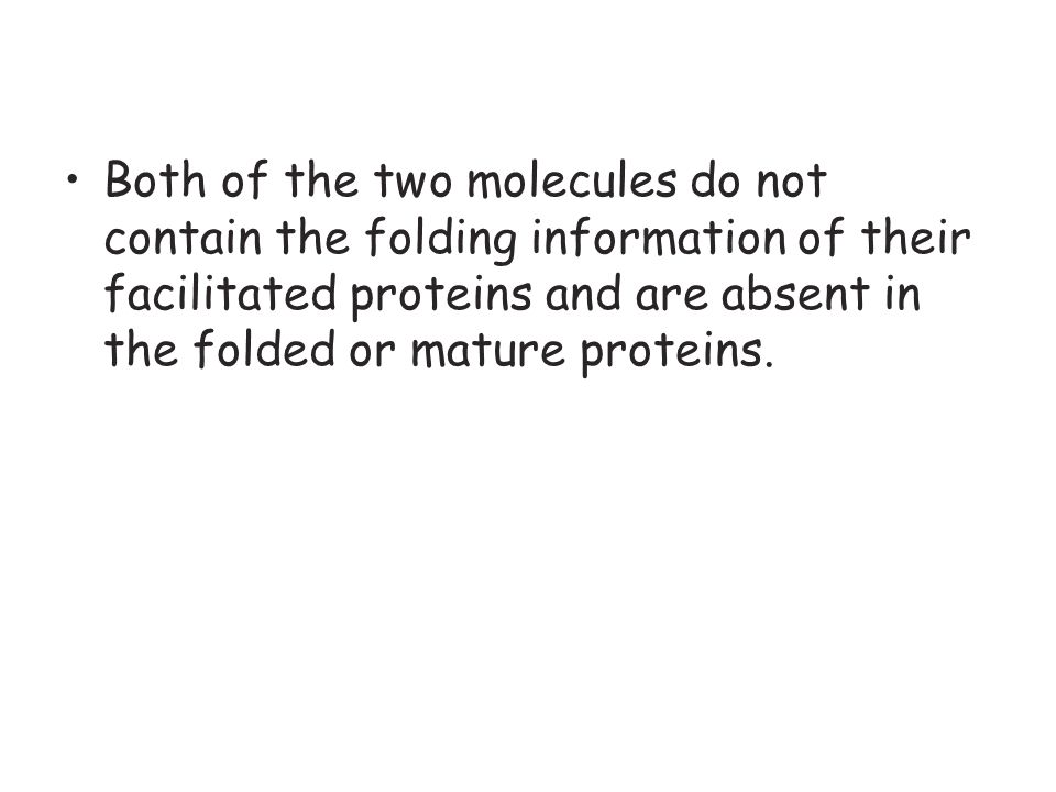 Both of the two molecules do not contain the folding information of their facilitated proteins and are absent in the folded or mature proteins.