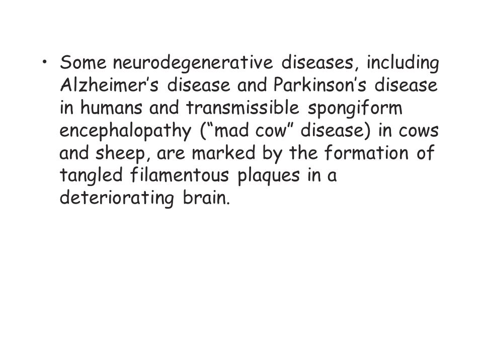 Some neurodegenerative diseases, including Alzheimer's disease and Parkinson's disease in humans and transmissible spongiform encephalopathy ( mad cow disease) in cows and sheep, are marked by the formation of tangled filamentous plaques in a deteriorating brain.