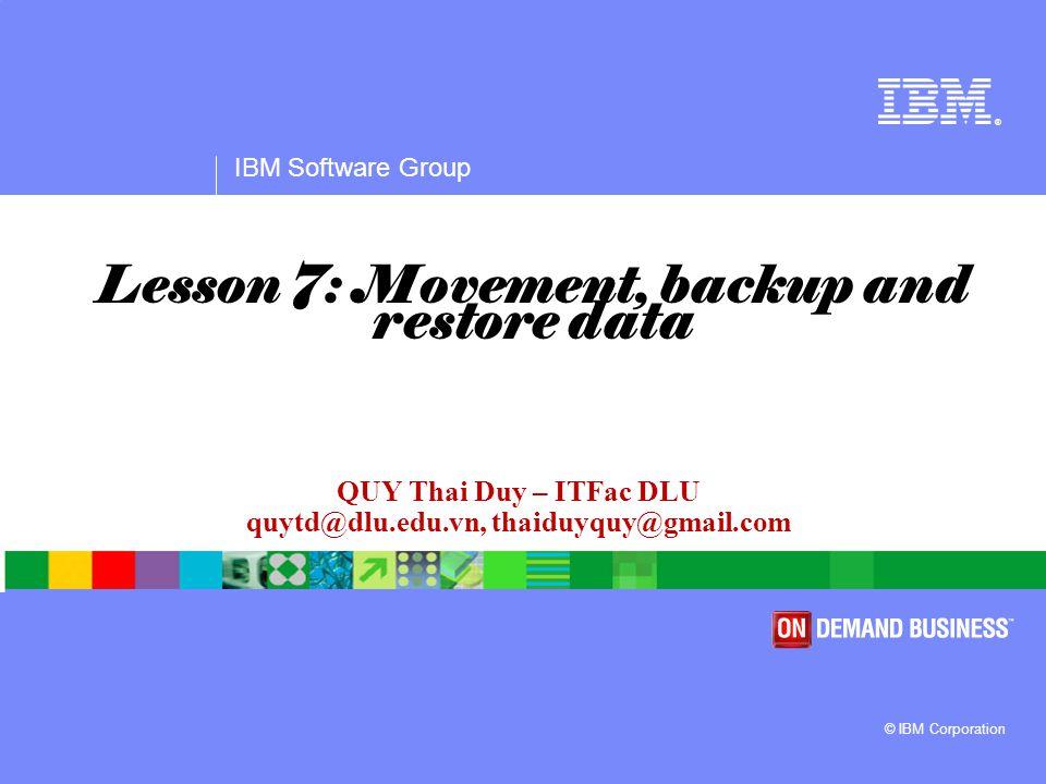 IBM Software Group Agenda  Data movement overview  Export  Import  Backup  Restore