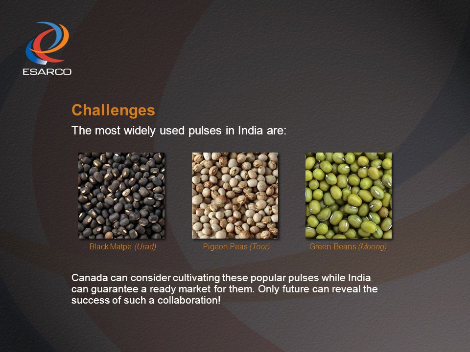 Challenges The most widely used pulses in India are: Black Matpe (Urad) Pigeon Peas (Toor) Green Beans (Moong) Canada can consider cultivating these popular pulses while India can guarantee a ready market for them.