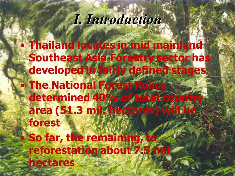 Thailand Country Report The State of Utilization of Tropical Timber From Fast-growing Plantations By Mr.Jaran Thongsatit Mr.Tinnakorn Piriyayotha Fore