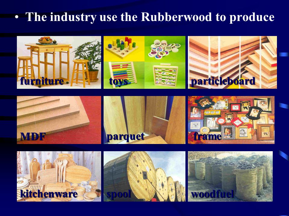 The industry use the Rubberwood to produce furnitureparticleboard MDF parquet frame kitchenware spool woodfuel toys