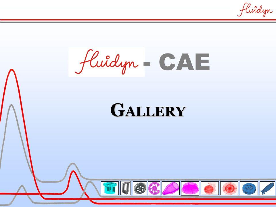 G ALLERY - CAE