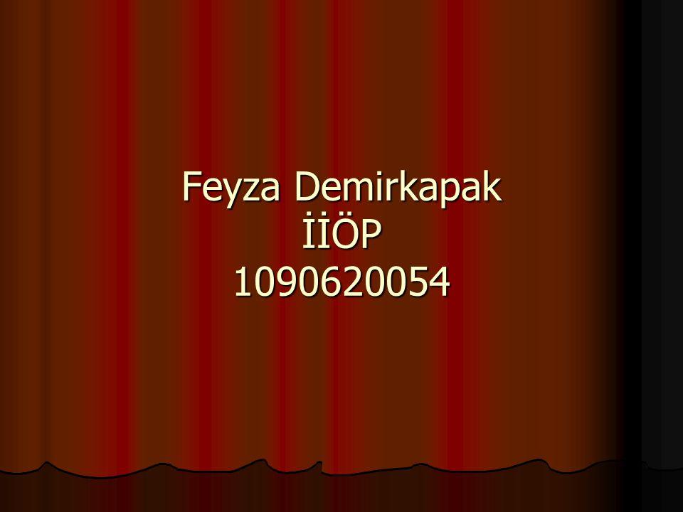 Feyza Demirkapak İİÖP 1090620054