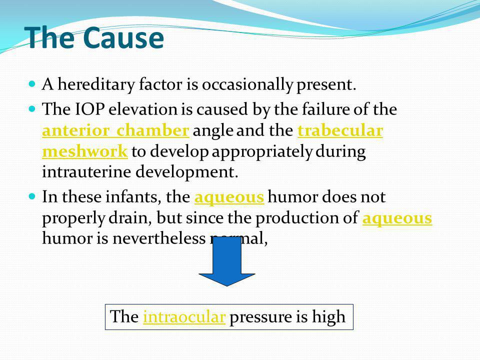 The Cause A hereditary factor is occasionally present. The IOP elevation is caused by the failure of the anterior chamber angle and the trabecular mes