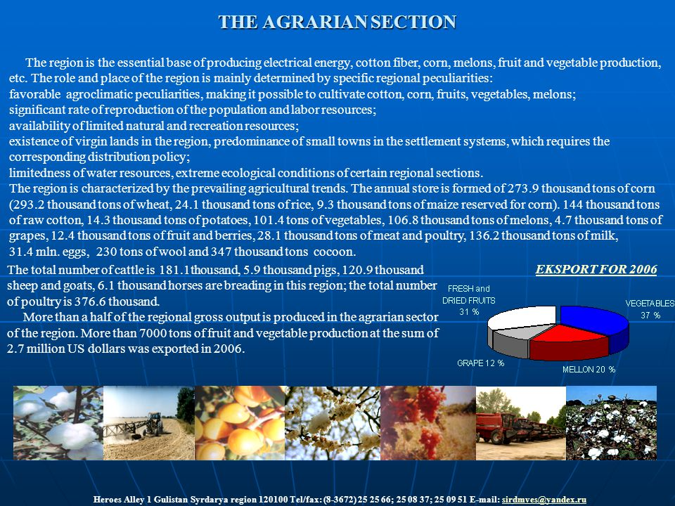 THE AGRARIAN SECTION The region is the essential base of producing electrical energy, cotton fiber, corn, melons, fruit and vegetable production, etc.