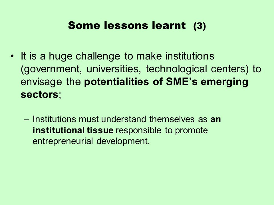 Some lessons learnt (3) It is a huge challenge to make institutions (government, universities, technological centers) to envisage the potentialities of SME's emerging sectors; –Institutions must understand themselves as an institutional tissue responsible to promote entrepreneurial development.