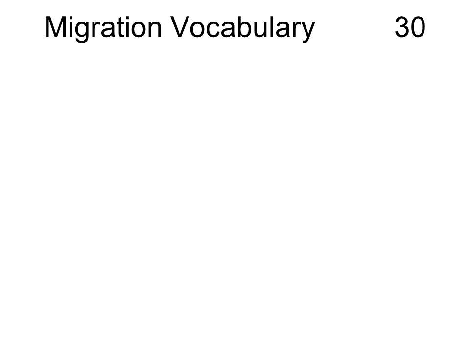 Migration Vocabulary 30