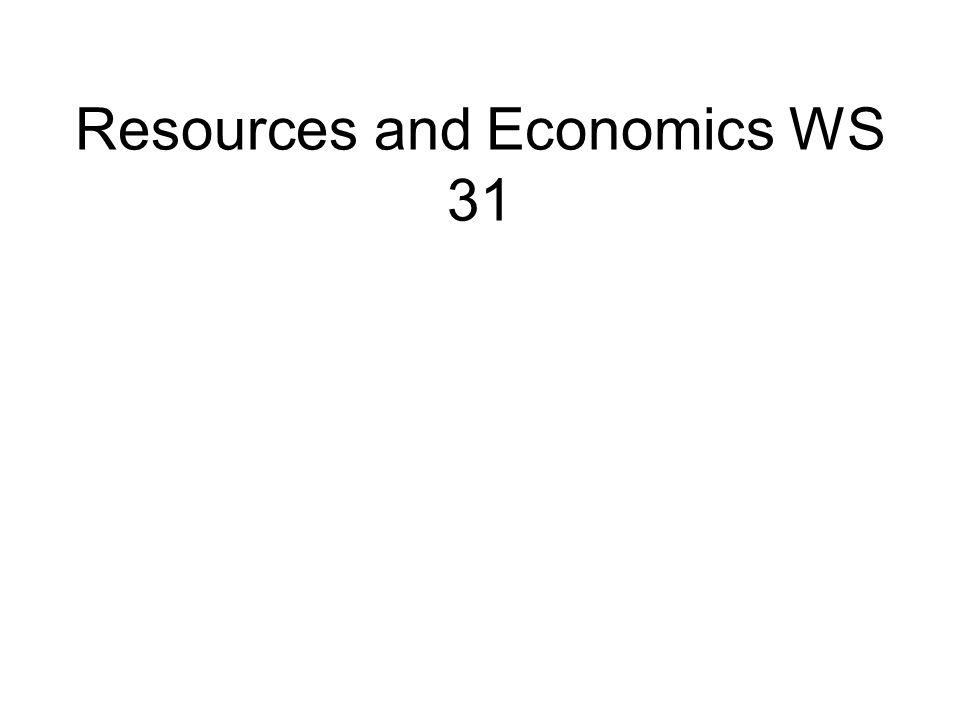 Resources and Economics WS 31