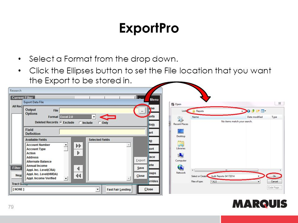 ExportPro 79 Select a Format from the drop down.