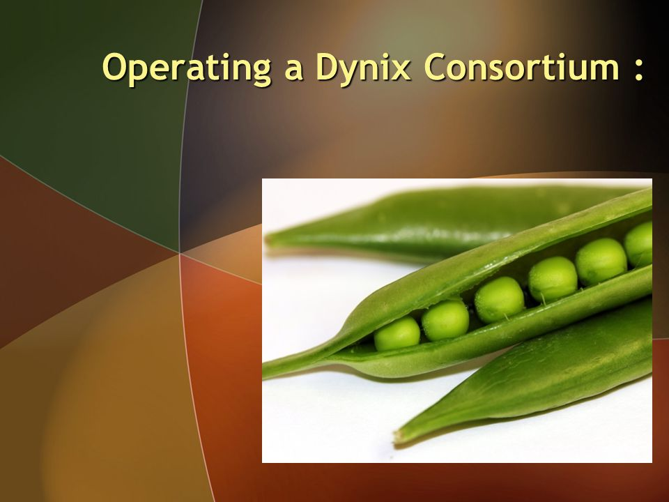 Operating a Dynix Consortium :