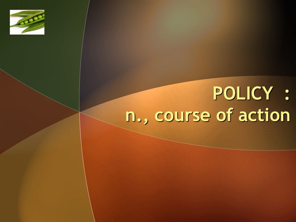 POLICY : n., course of action
