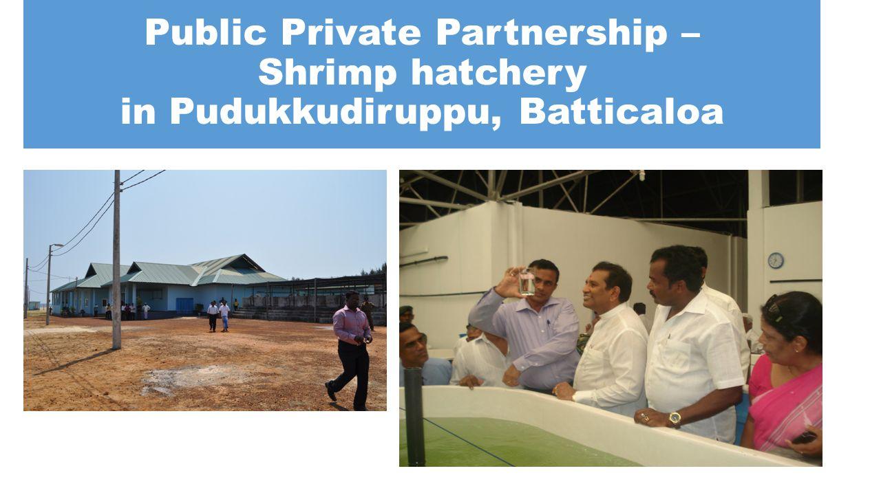 Public Private Partnership – Shrimp hatchery in Pudukkudiruppu, Batticaloa