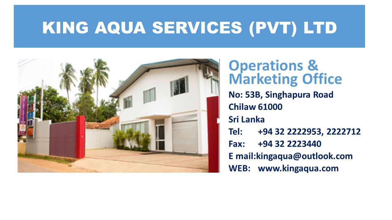 Operations & Marketing Office No: 53B, Singhapura Road Chilaw 61000 Sri Lanka Tel: +94 32 2222953, 2222712 Fax: +94 32 2223440 E mail:kingaqua@outlook