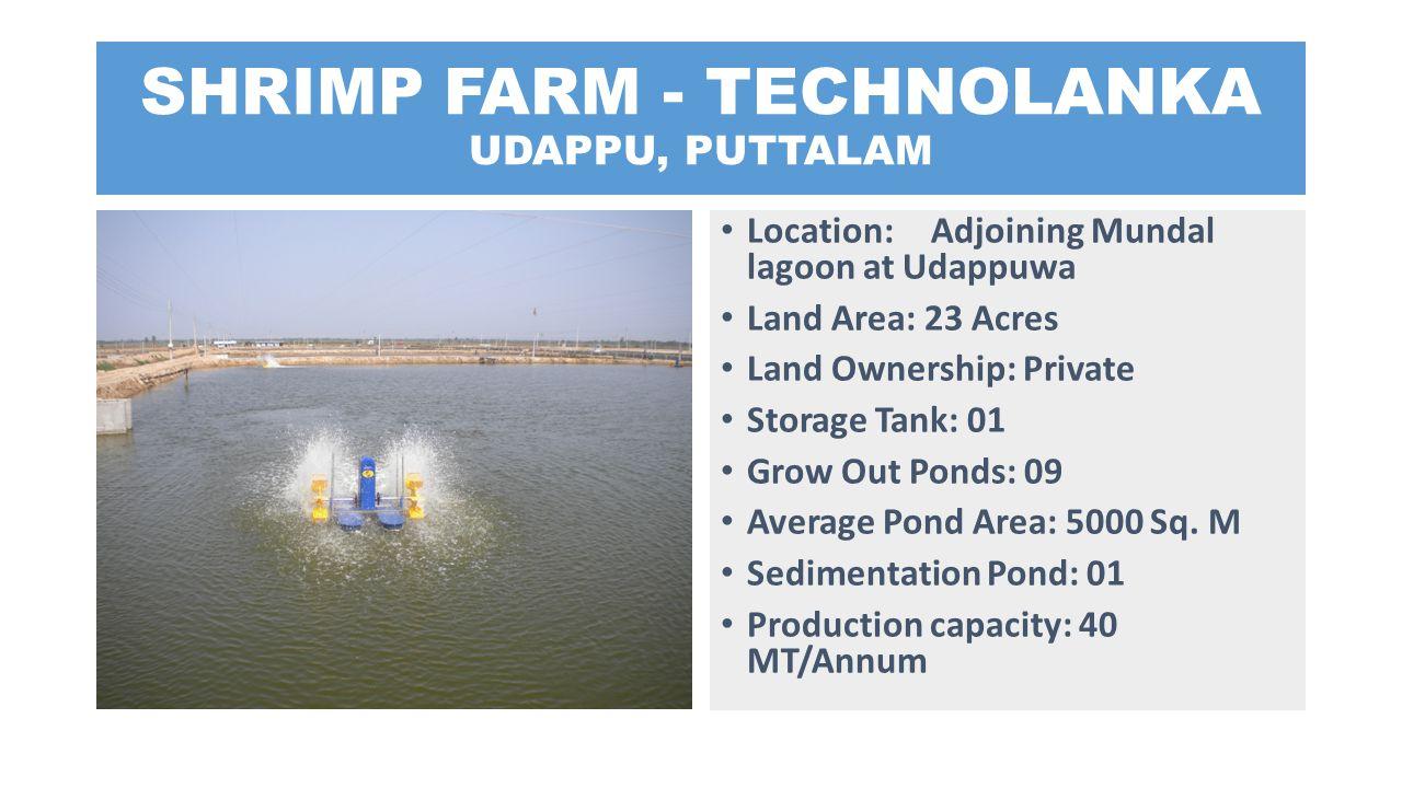 SHRIMP FARM - TECHNOLANKA UDAPPU, PUTTALAM Location: Adjoining Mundal lagoon at Udappuwa Land Area: 23 Acres Land Ownership: Private Storage Tank: 01
