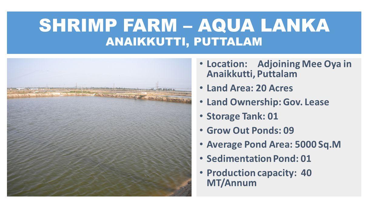 SHRIMP FARM – AQUA LANKA ANAIKKUTTI, PUTTALAM Location: Adjoining Mee Oya in Anaikkutti, Puttalam Land Area: 20 Acres Land Ownership: Gov. Lease Stora