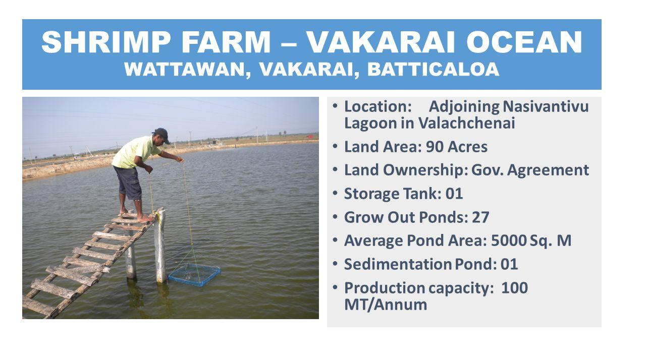 SHRIMP FARM – VAKARAI OCEAN WATTAWAN, VAKARAI, BATTICALOA Location: Adjoining Nasivantivu Lagoon in Valachchenai Land Area: 90 Acres Land Ownership: G