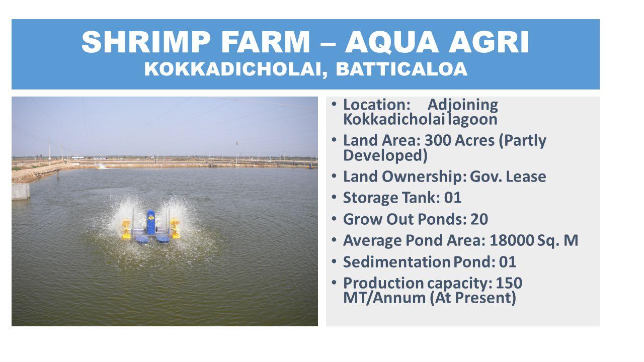 SHRIMP FARM – AQUA AGRI KOKKADICHOLAI, BATTICALOA Location: Adjoining Kokkadicholai lagoon Land Area: 300 Acres (Partly Developed) Land Ownership: Gov