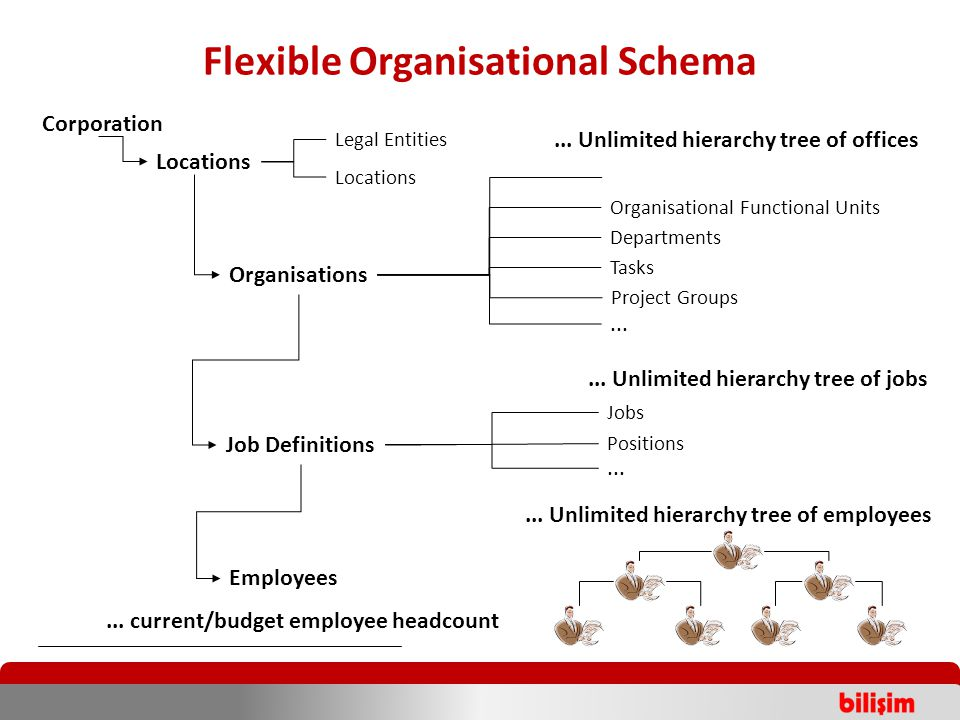 Flexible Organisational Schema Corporation Locations Organisations Job Definitions Legal Entities Locations Organisational Functional Units Departments Tasks Jobs Positions Project Groups......