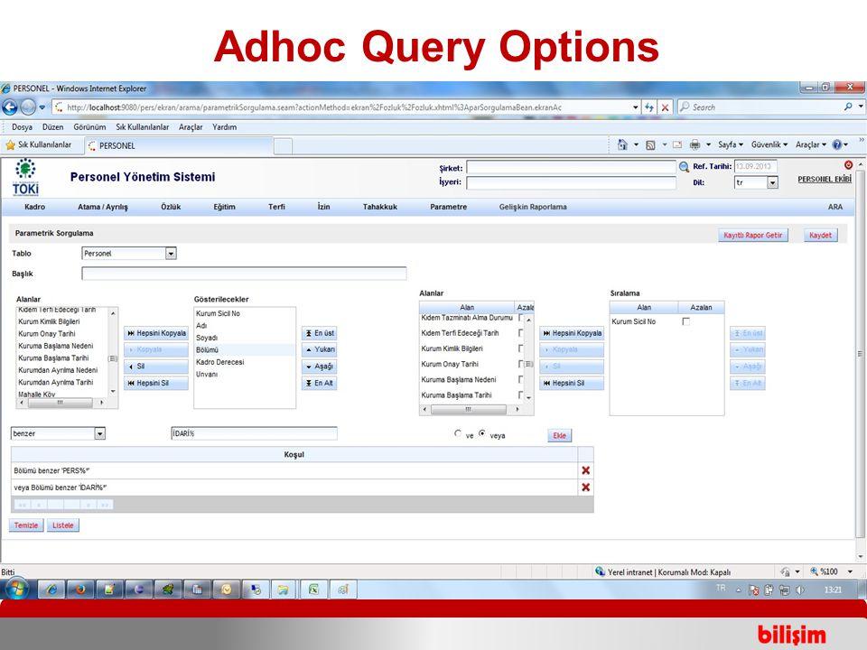 Adhoc Query Options