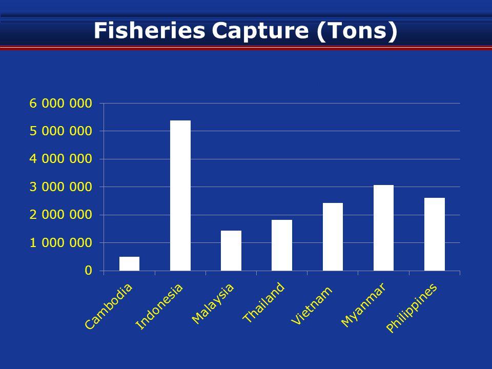 Fisheries Aquaculture (Tons) Year20062007200820092010 Cambodia 34,200 40,000 50,000 60,000 Lao 78,000 75,001 82,100 Brunei 700 622 473 433 500 Indonesia 1,292,899 1,392,904 1,690,121 1,733,434 2,304,828 Malaysia 168,317 178,239 243,081 333,445 373,151 Thailand 1,385,801 1,390,031 1,374,024 1,396,020 1,286,122 Vietnam 1,657,727 2,156,500 2,461,700 2,556,200 2,671,800 Myanmar 574,990 604,660 674,776 778,096 850,697 Philippines 623,369 709,715 741,142 737,397 744,695 Singapore 8,573 4,503 3,518 3,567 3,499 Source: FAO