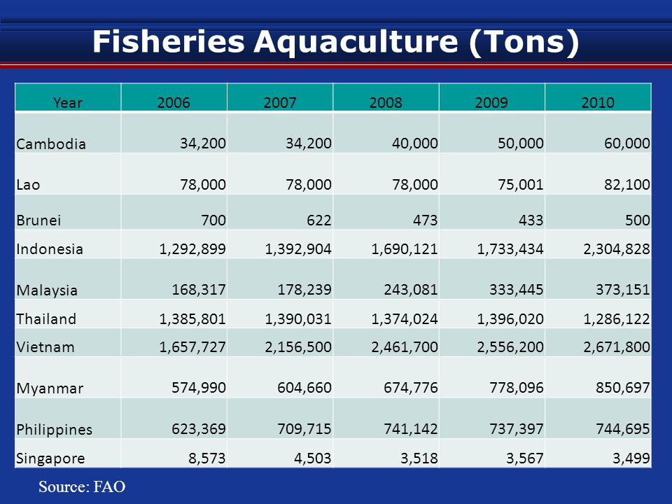 Fisheries Aquaculture (Tons) Year20062007200820092010 Cambodia 34,200 40,000 50,000 60,000 Lao 78,000 75,001 82,100 Brunei 700 622 473 433 500 Indonesia 1,292,899 1,392,904 1,690,121 1,733,434 2,304,828 Malaysia 168,317 178,239 243,081 333,445 373,151 Thailand 1,385,801 1,390,031 1,374,024 1,396,020 1,286,122 Vietnam 1,657,727 2,156,500 2,461,700 2,556,200 2,671,800 Myanmar 574,990 604,660 674,776 778,096 850,697 Philippines 623,369 709,715 741,142 737,397 744,695 Singapore 8,573 4,503 3,518 3,567 3,499 Source: FAO