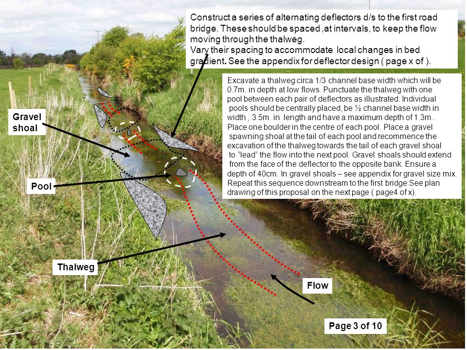 Page 3 of 10 Construct a series of alternating deflectors d/s to the first road bridge.