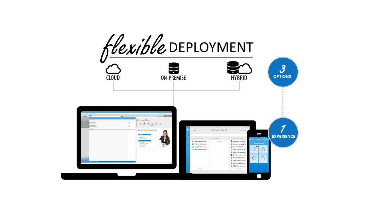 flexible DEPLOYMENT OPTIONS 3 EXPERIENCE 1