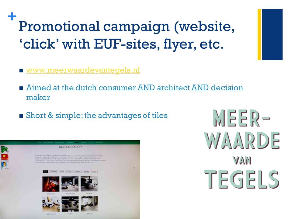 + Promotional campaign (website, 'click' with EUF-sites, flyer, etc.
