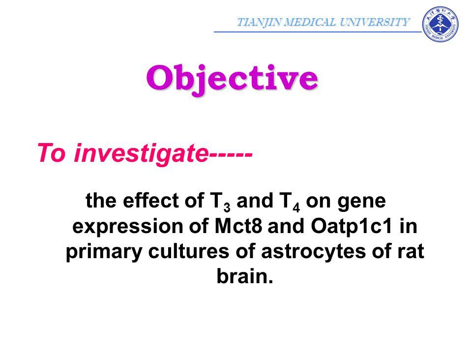 TIANJIN MEDICAL UNIVERSITY Methods results Methods & results
