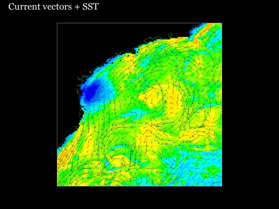 Current vectors + SST