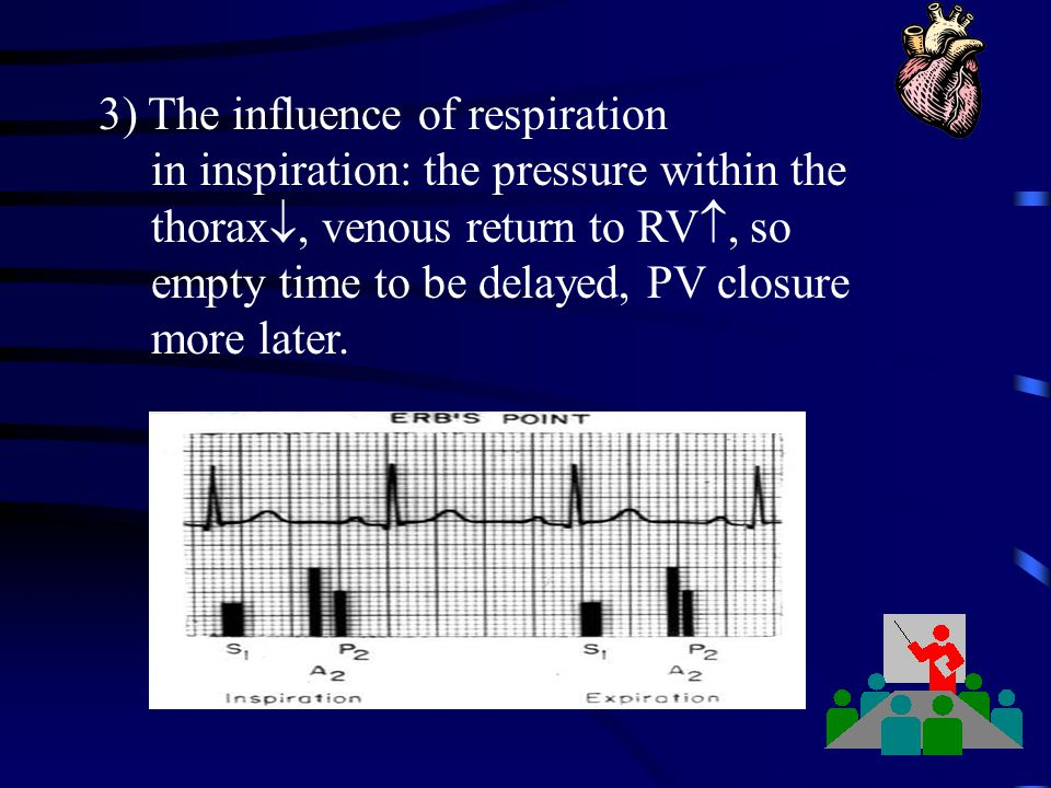 3) The influence of respiration in inspiration: the pressure within the thorax , venous return to RV , so empty time to be delayed, PV closure more
