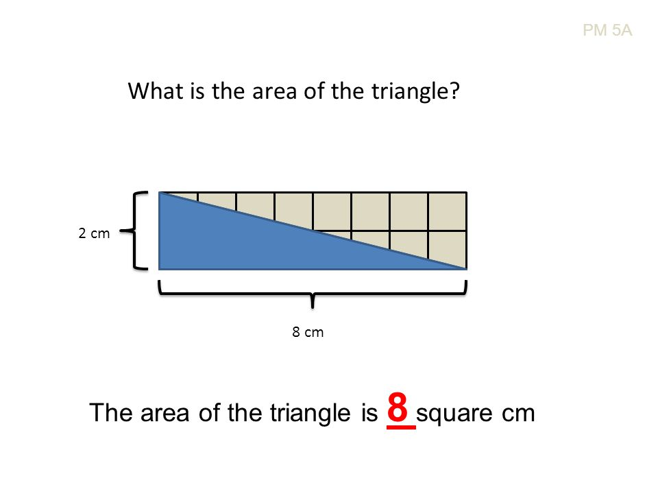 PM 5A What is the area of the triangle? 8 cm 2 cm The area of the triangle is 8 square cm
