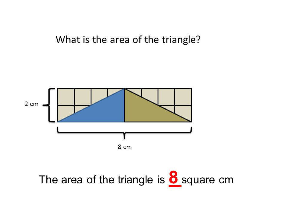 8 cm 2 cm What is the area of the triangle? The area of the triangle is 8 square cm