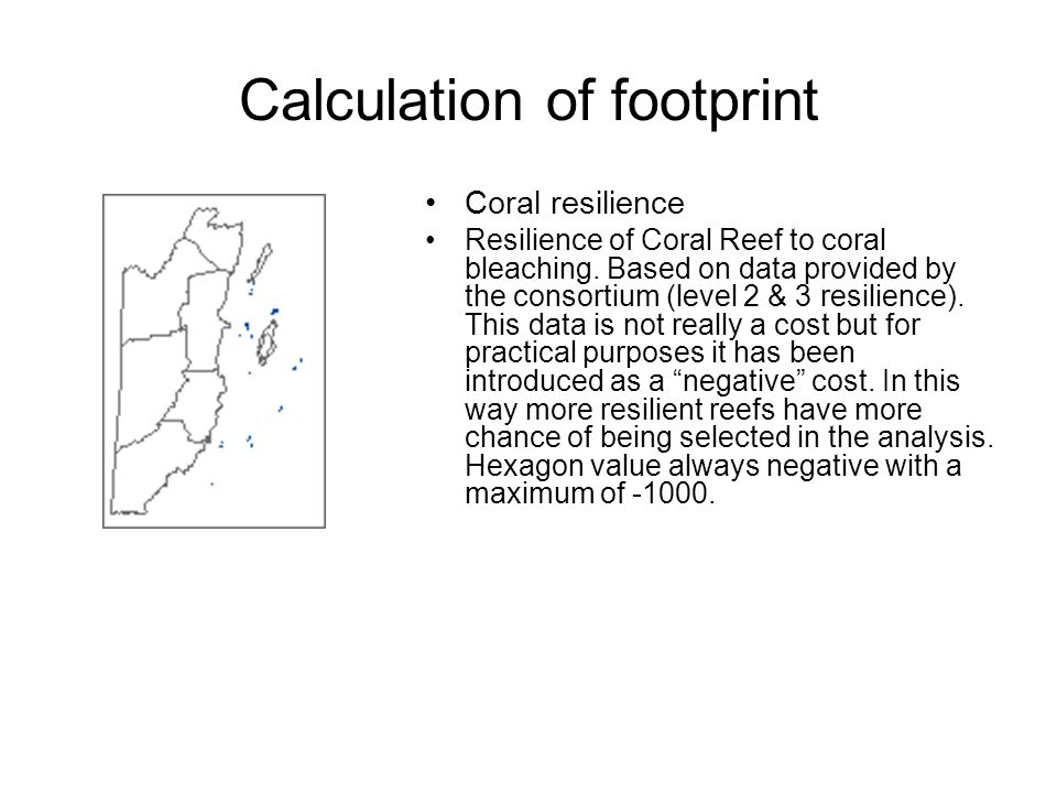 Coral resilience Resilience of Coral Reef to coral bleaching.