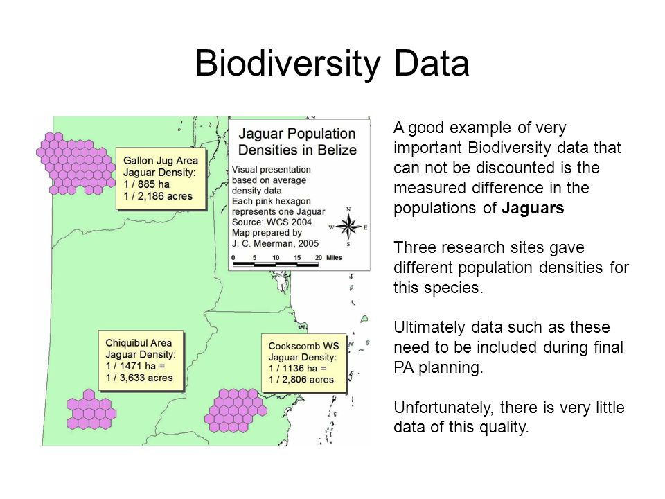 Biodiversity Data A good example of very important Biodiversity data that can not be discounted is the measured difference in the populations of Jaguars Three research sites gave different population densities for this species.