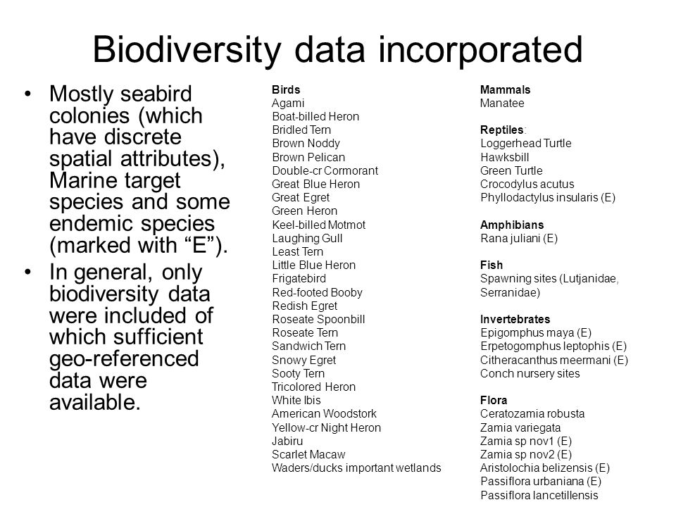 Biodiversity data incorporated Mostly seabird colonies (which have discrete spatial attributes), Marine target species and some endemic species (marked with E ).