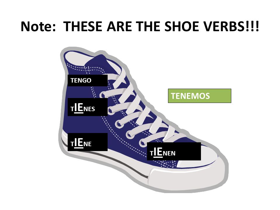 Note: THESE ARE THE SHOE VERBS!!! TENGO T IE NES T IE NE T IE NEN TENEMOS