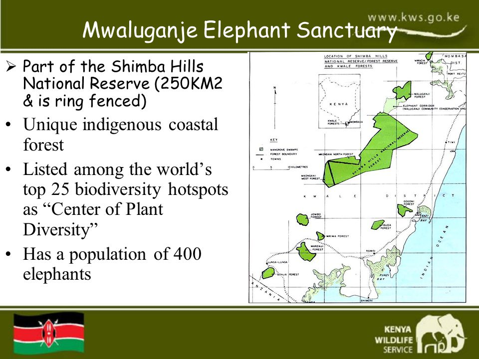 Mwaluganje Elephant Sanctuary  Part of the Shimba Hills National Reserve (250KM2 & is ring fenced) Unique indigenous coastal forest Listed among the world's top 25 biodiversity hotspots as Center of Plant Diversity Has a population of 400 elephants