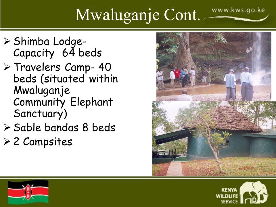 Mwaluganje Cont.  Shimba Lodge- Capacity 64 beds  Travelers Camp- 40 beds (situated within Mwaluganje Community Elephant Sanctuary)  Sable bandas 8