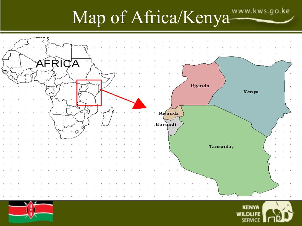 Facts of Kenya  Area-580,367 km2  Capital-Nairobi  Member -Commonwealth, Commessa & EAC  Population-32 million  Population growth-2.9%  Life expectancy -57(M0 61 (F)  Adult literacy-78.1%  GDP-US$15Billion  GDP per head-US$400  Currency-K.Shilling-(US$1=70)