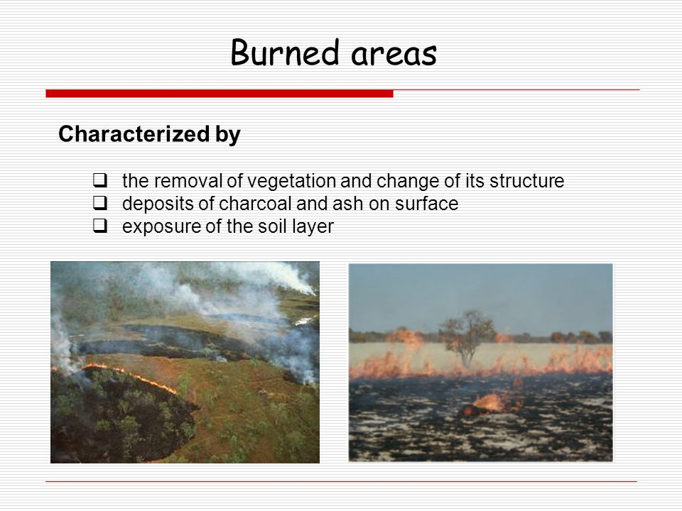 Burned areas Characterized by  the removal of vegetation and change of its structure  deposits of charcoal and ash on surface  exposure of the soil