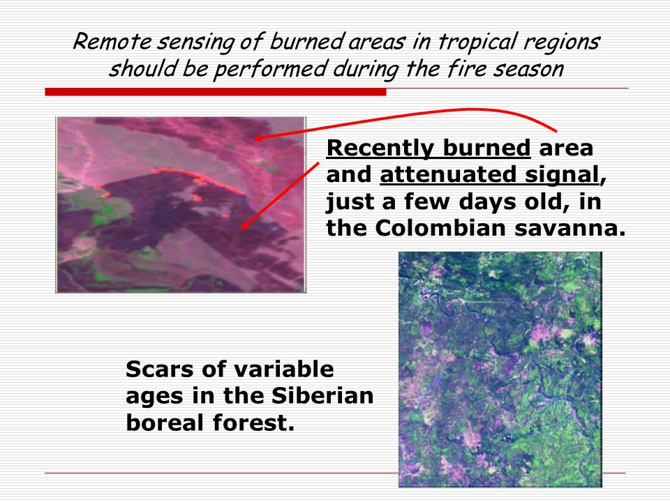 Remote sensing of burned areas in tropical regions should be performed during the fire season Scars of variable ages in the Siberian boreal forest. Re