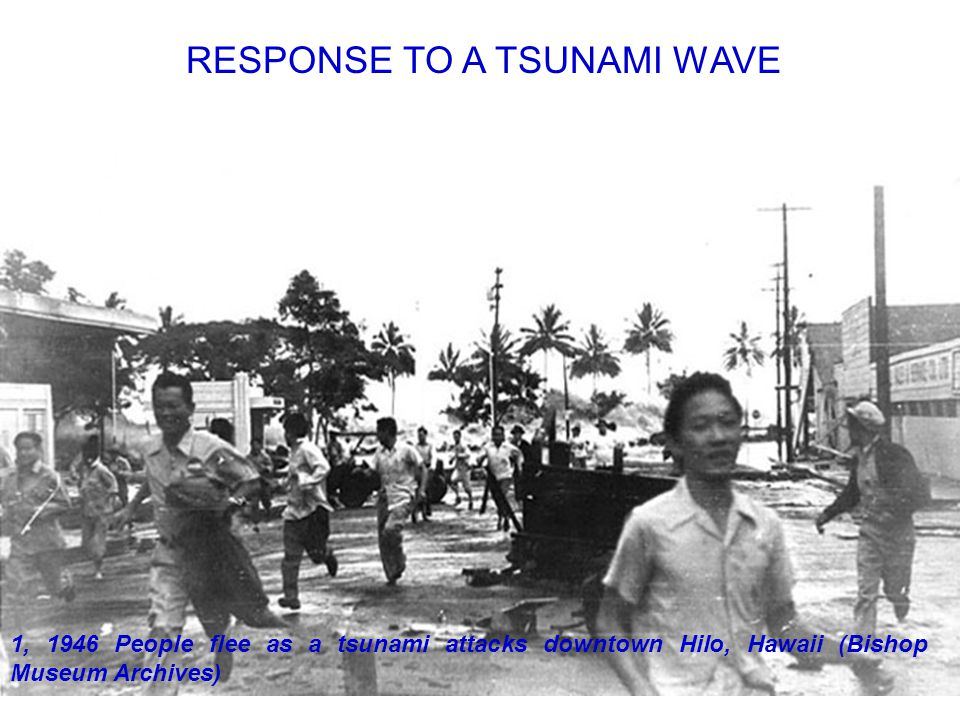 18 1, 1946 People flee as a tsunami attacks downtown Hilo, Hawaii (Bishop Museum Archives) RESPONSE TO A TSUNAMI WAVE