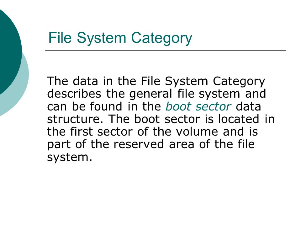 File System Category The data in the File System Category describes the general file system and can be found in the boot sector data structure. The bo