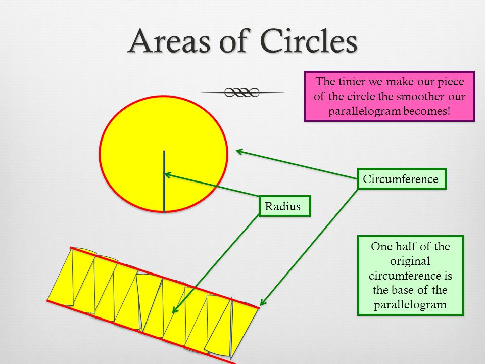 Areas of Circles Circumference Radius One half of the original circumference is the base of the parallelogram The tinier we make our piece of the circ