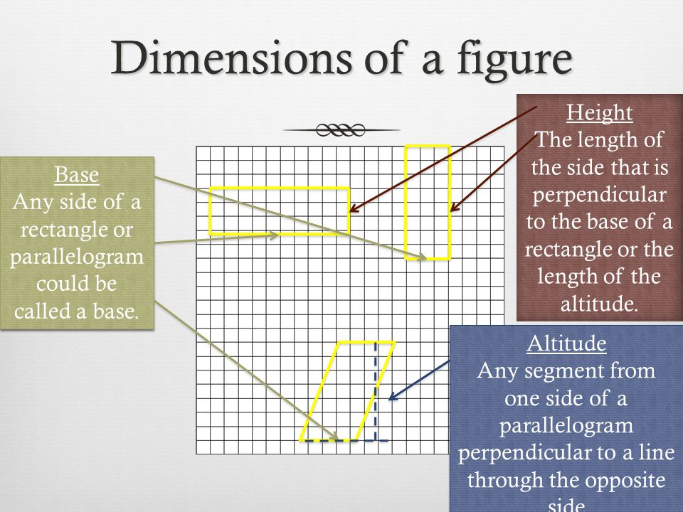 Dimensions of a figure Base Any side of a rectangle or parallelogram could be called a base. Base Any side of a rectangle or parallelogram could be ca