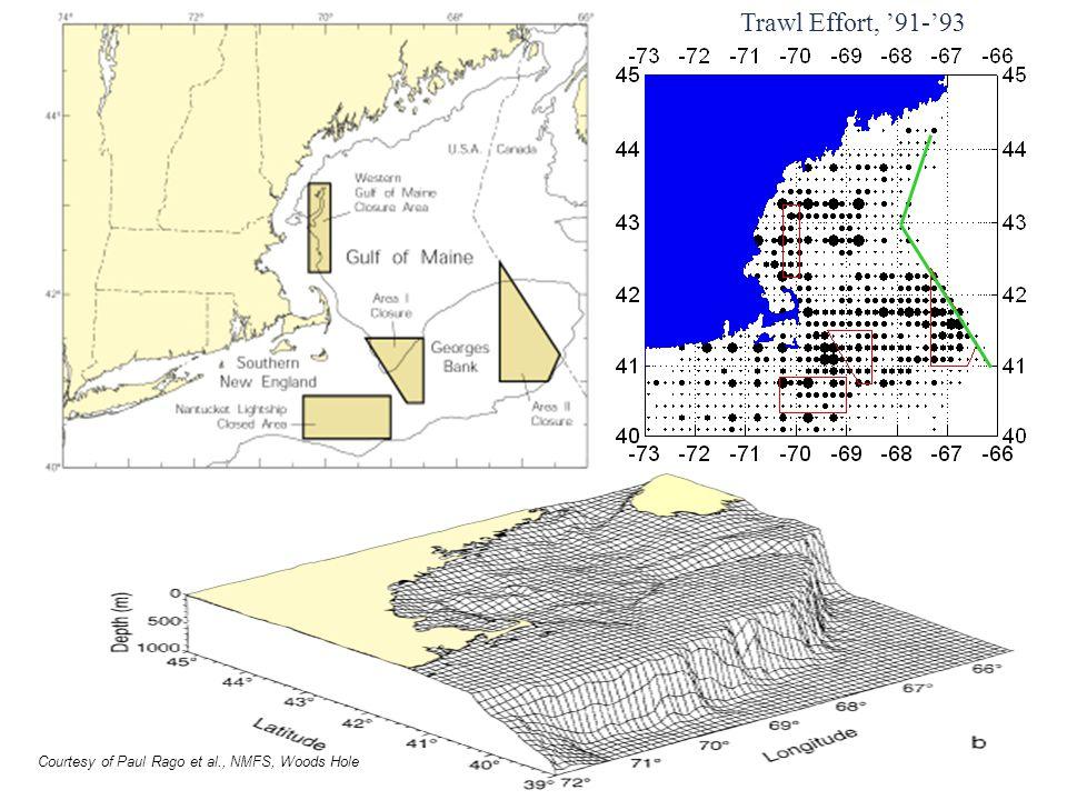 Trawl Effort, '91-'93 Courtesy of Paul Rago et al., NMFS, Woods Hole
