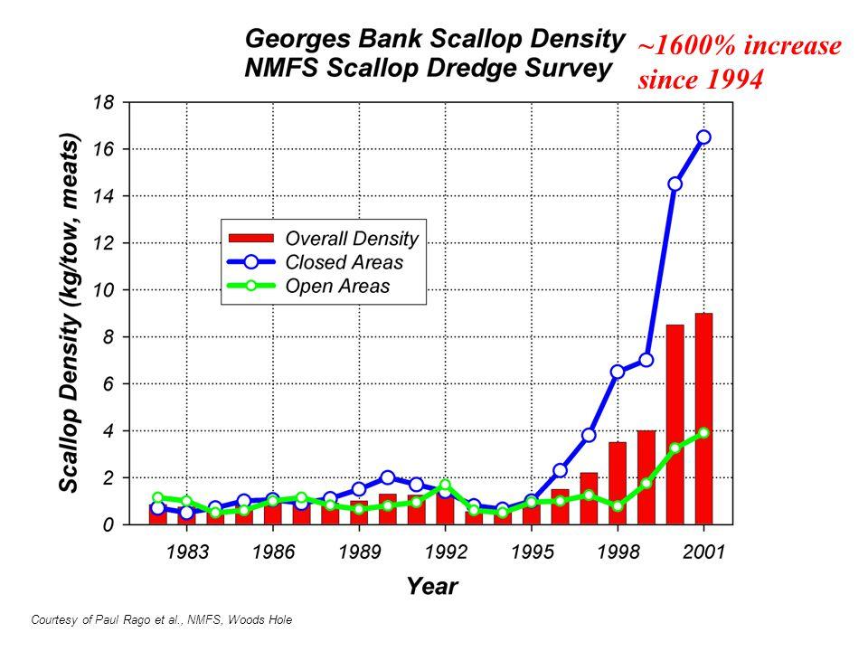 ~1600% increase since 1994 Courtesy of Paul Rago et al., NMFS, Woods Hole
